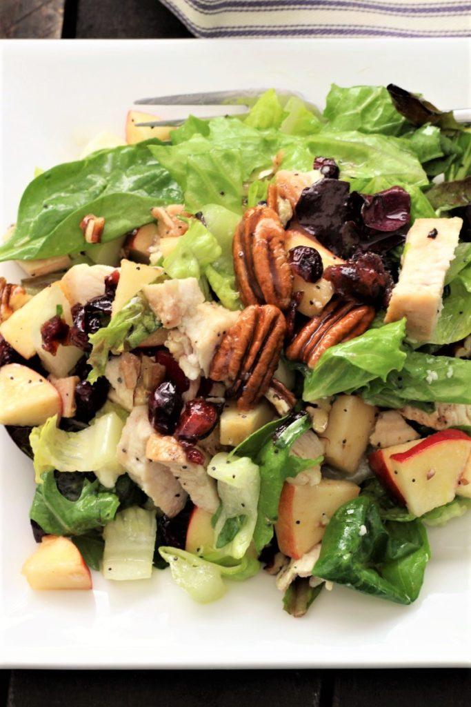 Autumn Chicken Pecan Salad