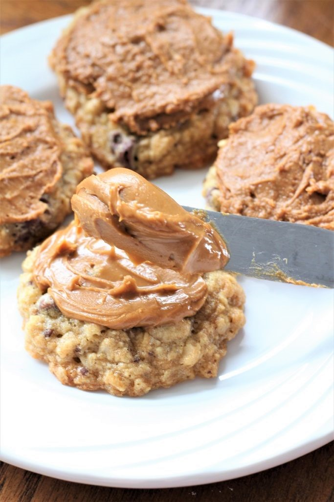 Oatmeal Chocolate Chip Cookie Butter Cookies